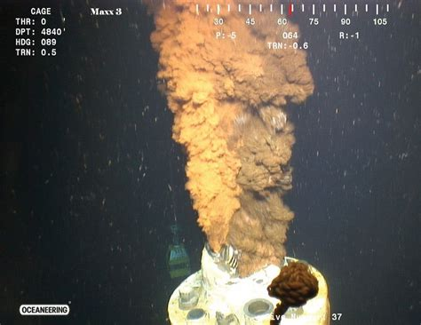 Review of flow rate estimates of the Deepwater Horizon oil