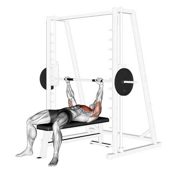 Smith Machine Bench Press: A Good Variation Of The Number